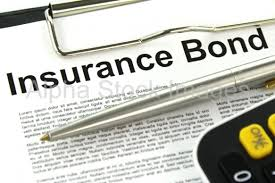 Surety is Different than Insurance | Kingrise Finance Limited
